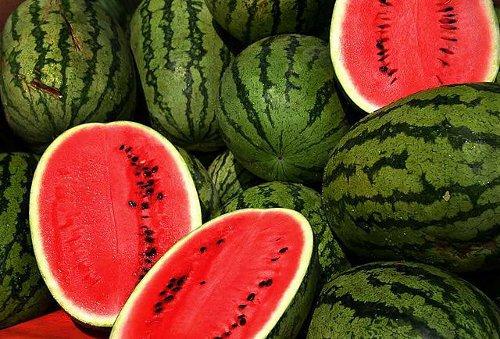 Watermelons - Steve Evans