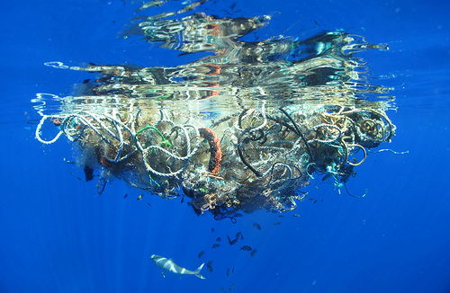 Great Pacific Garbage Patch - Lindsey Hoshaw