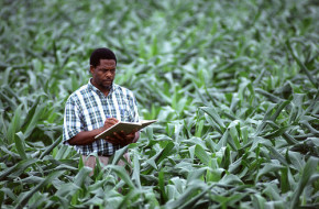 Crop scientist - Wikimedia Commons
