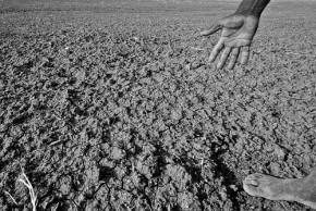 Drought - Wikimedia Commons