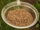 Sugar beet cossettes - Sandstein