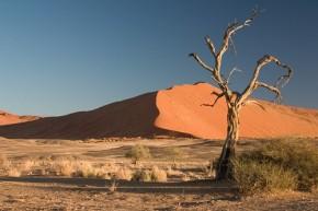 Namib Desert Namibia - Luca Galuzzi