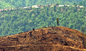 Deforestation in Burma - jidanchaomian - Flickr