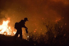 Wildfire in California - FEMA - Andrea Booher