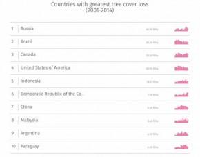 10 Negara Kehilangan Tutupan Pohon Terbanyak