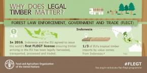 Produk Kayu Legal Penting