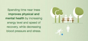 Anda Stres Pohon Obatnya