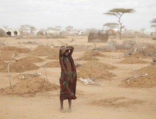 108 Juta Penduduk Dunia Kelaparan
