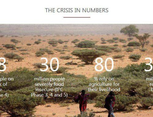Krisis Kemanusiaan dalam Angka