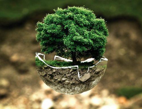 Ancaman bagi Lingkungan Hidup Dunia