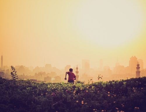 Bukti Makin Kuat: Polusi Udara Picu Kematian Prematur