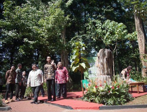 KLHK Berikan 65 Penghargaan Lingkungan