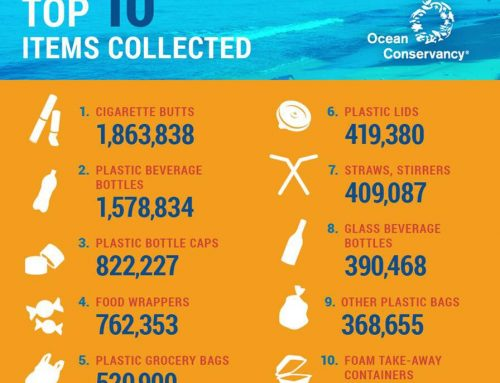 10 Sampah Terbanyak di Lautan