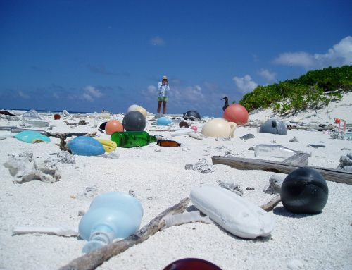 Bebaskan Bumi dari Sampah Plastik