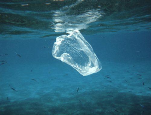 Saatnya Indonesia Memimpin Pengurangan Sampah Plastik