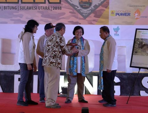Setelah Susi Kini Ada Hiu Paus Bernama Siti