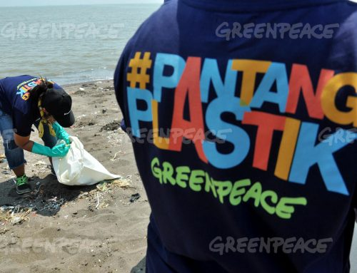 Corporations Behind Plastics Pollution Pandemic