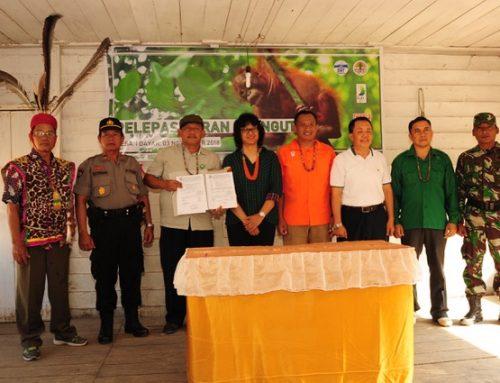 Novi dan Leci Dilepasliarkan di Hutan Lindung Sungai Lesan