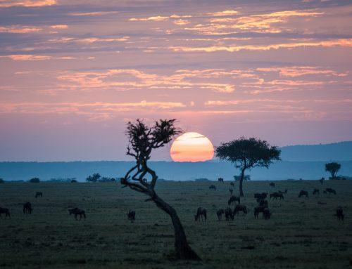 Inilah 15 Kawasan Konservasi Baru Terbaik Versi IUCN
