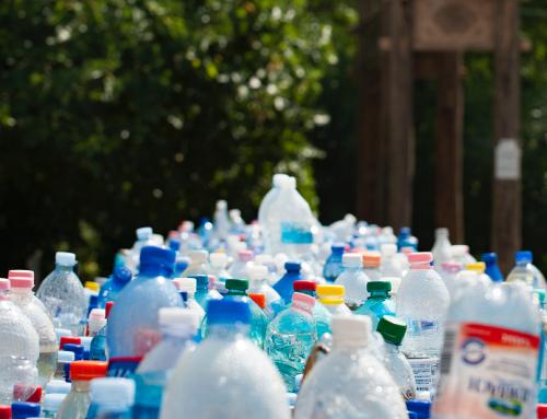 Mengurangi Plastik pada Perayaan Tahun Baru 2019