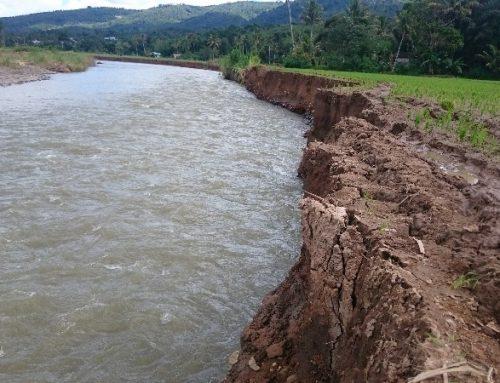 Menilik Bencana Bengkulu: Akibat Kerusakan DAS?
