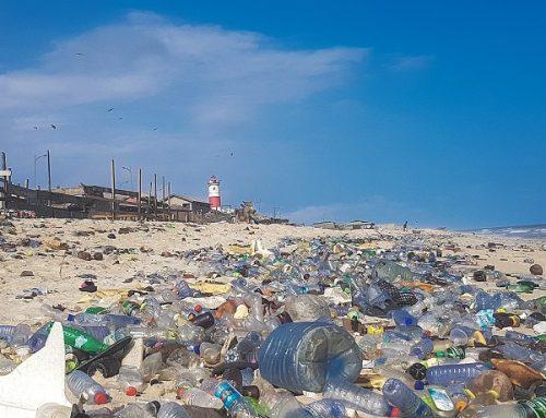 PBB Turun Tangan Selesaikan Sampah Plastik