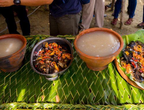 Warga Papua Rayakan Hari Sagu Tiap 21 Juni